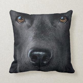 perro casero 3 de la almohada