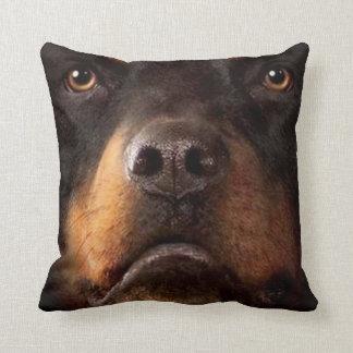 Perro casero 4 de la almohada