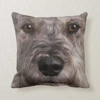 Perro casero 9 de la almohada