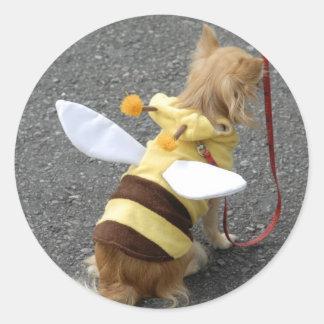 Perro casero japonés vestido como abeja en un pegatina redonda