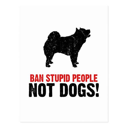 Perro chino de perro chino postal