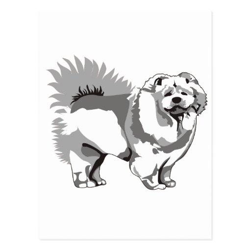 ¡Perro chino! Tarjetas Postales