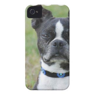 Perro clásico de Boston Terrier Funda Para iPhone 4