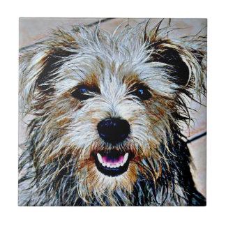 Perro colorido azulejo cuadrado pequeño