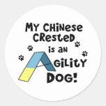 Perro con cresta chino de la agilidad pegatina redonda