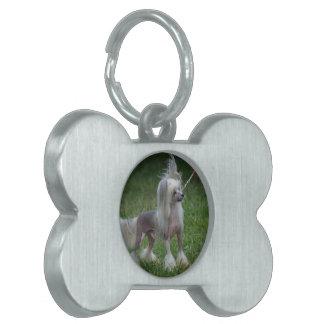 Perro con cresta chino lindo placa de mascota