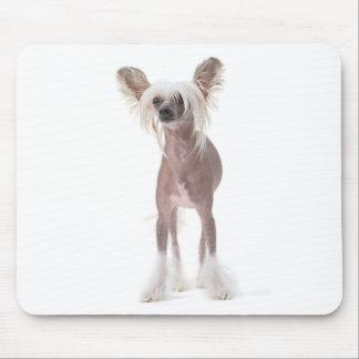 Perro con cresta chino Mouspad Tapetes De Raton