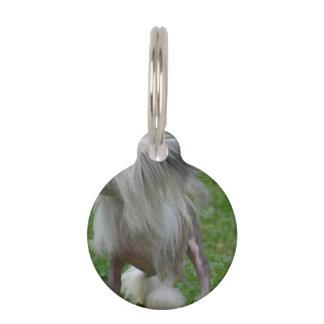 Perro con cresta chino Prancing Identificador Para Mascotas