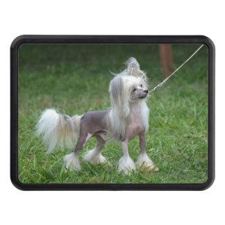 Perro con cresta chino tapas de remolque