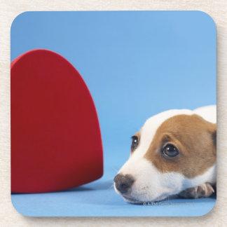 Perro con el corazón posavasos