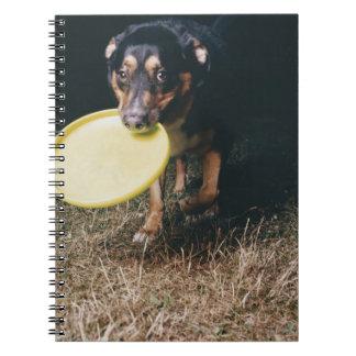 Perro con el disco volador en boca libro de apuntes con espiral