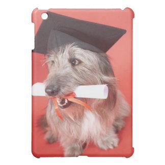 Perro con el mortarboard y el diploma