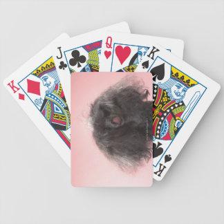 Perro con el pelo delante de la cara y de la lengu baraja de cartas