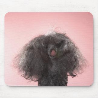 Perro con el pelo delante de la cara y de la lengu tapetes de ratones
