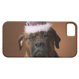 Perro con la corona del cumpleaños en la cabeza iPhone 5 fundas