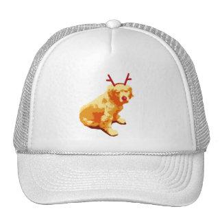 Perro con la nariz roja gorras