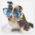 Perro con las gafas de sol y el postre helado calcomanías cuadradass