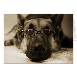 Perro con los vidrios tarjeta