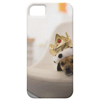Perro con una corona iPhone 5 fundas