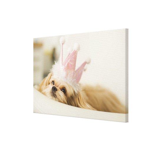 Perro con una corona impresión en lienzo
