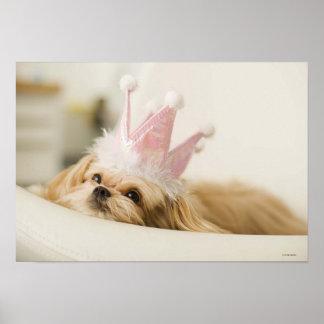 Perro con una corona posters