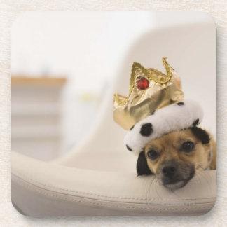 Perro con una corona posavaso