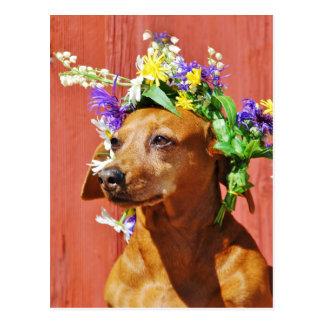 Perro con una guirnalda floral tradicional al MI Tarjetas Postales