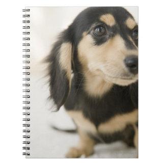 Perro Spiral Notebooks