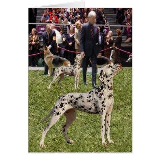 Perro dálmata divertido de la demostración tarjeta de felicitación