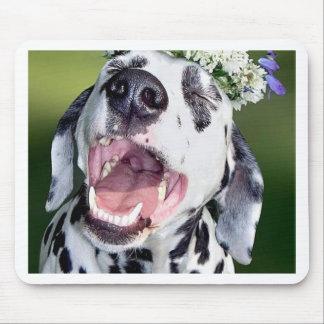 Perro dálmata sonriente tapetes de ratones