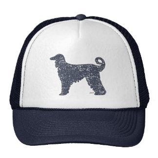 Perro de afgano con el gorra azul de los corazones