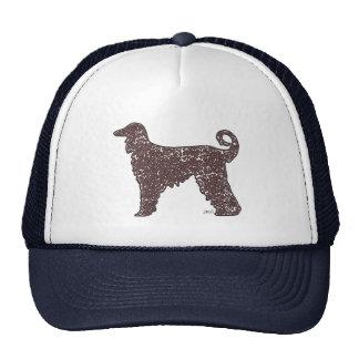 Perro de afgano con el gorra de los corazones de B