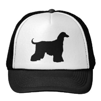 Perro de afgano negro gorra