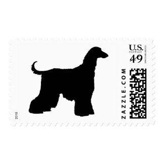 Perro de afgano negro franqueo