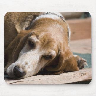 perro de afloramiento cansado alfombrillas de raton