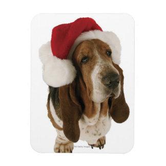 Perro de afloramiento en el gorra de Santa Imán De Vinilo