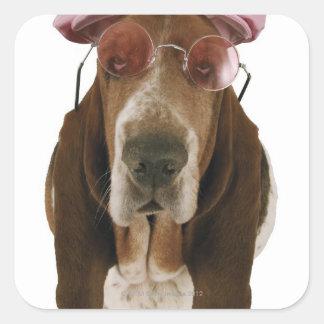Perro de afloramiento en gafas de sol y casquillo calcomanía cuadradas personalizada