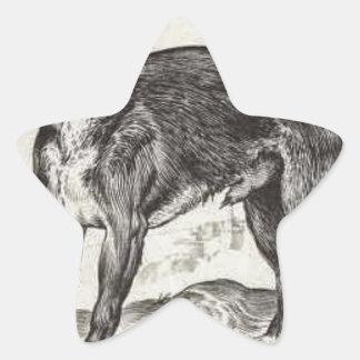 Perro de Agostino Carracci Pegatina En Forma De Estrella