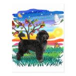 Perro de agua portugués (#2) tarjeta postal