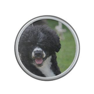 Perro de agua portugués adorable altavoz bluetooth