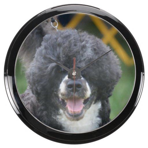 Perro de agua portugués relojes aquavista