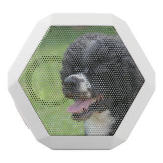 Perro de agua portugués lindo altavoces bluetooth blancos boombot REX