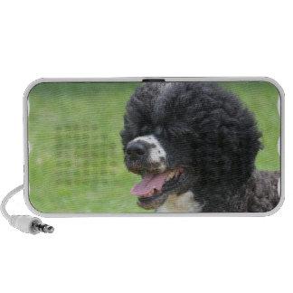 Perro de agua portugués lindo laptop altavoz