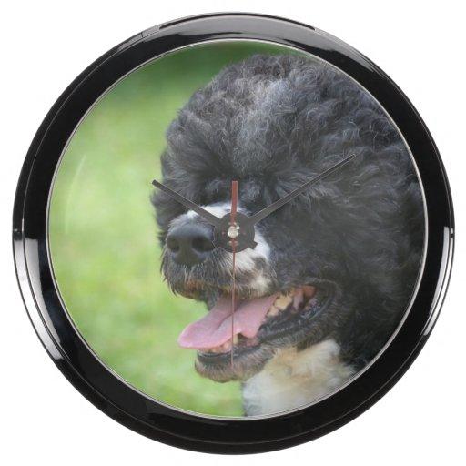 Perro de agua portugués lindo reloj aquavista