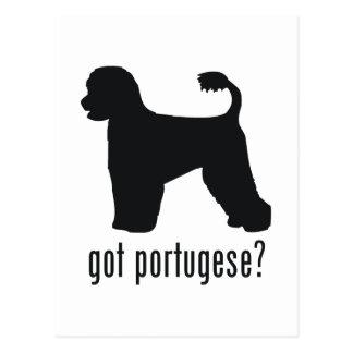 Perro de agua portugués postales