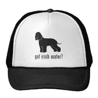 Perro de aguas de agua irlandesa gorras de camionero