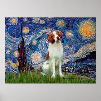 Perro de aguas de Bretaña 3 - noche estrellada Impresiones