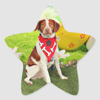 Perro de aguas de Pascua - de Bretaña - Elliott Pegatina Forma De Estrella Personalizada