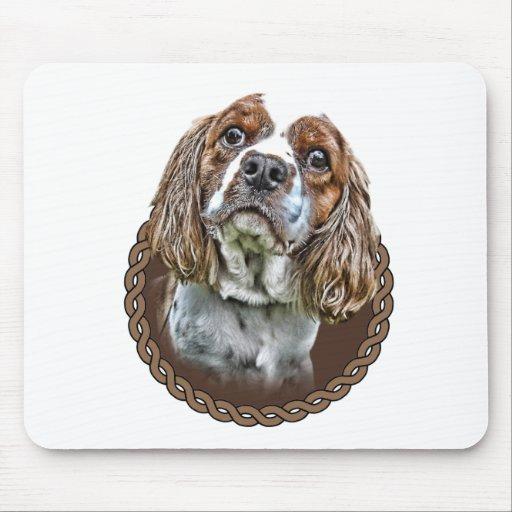 Perro de aguas de rey Charles arrogante 001 Tapetes De Ratón