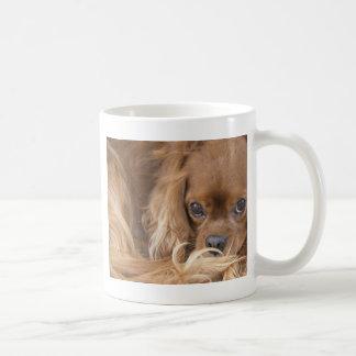 Perro de aguas de rey Charles arrogante de rubíes  Taza De Café